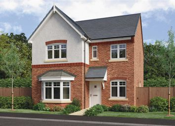 "Thumbnail 4 bed detached house for sale in ""Calver"" at Barnards Way, Kibworth Harcourt, Leicester"