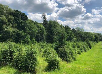 Thumbnail Land for sale in Riding Lane, Hildenborough, Tonbridge