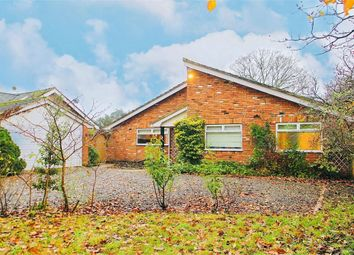 Thumbnail 3 bed detached bungalow to rent in Deep Field, Datchet, Berkshire