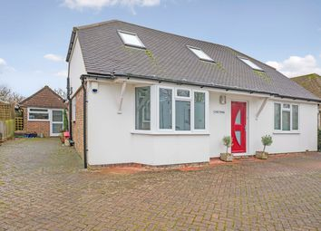 Thumbnail 3 bedroom detached bungalow to rent in Ockley Lane, Hassocks
