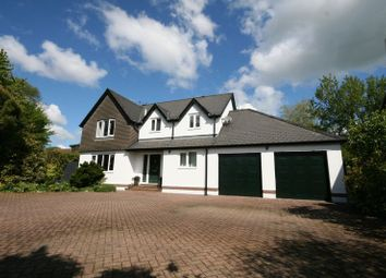 Thumbnail 4 bedroom detached house for sale in New Road, Lifton