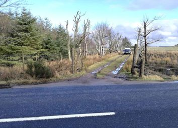 Thumbnail Land for sale in Redbog New Pitsligo, Fraserburgh AB436Ny