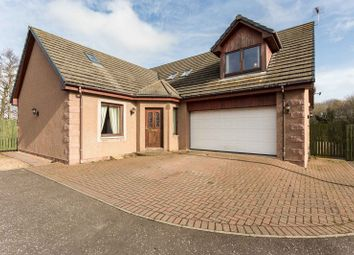 Thumbnail 4 bed detached house for sale in Old Mill Place, Friockheim, Angus