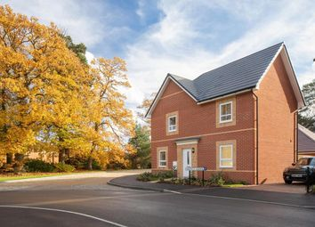 "Thumbnail 4 bedroom detached house for sale in ""Alderney"" at Cricket Field Grove, Crowthorne"