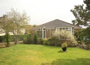 Thumbnail 3 bedroom bungalow for sale in Abbey Lane, Sheffield, South Yorkshire