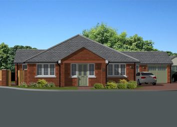 Thumbnail 4 bed detached bungalow for sale in Kittersley Drive, Liverton, Newton Abbot, Devon