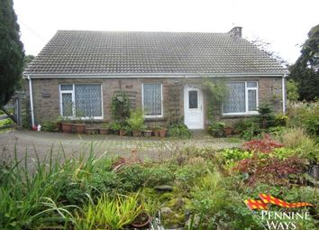 Thumbnail 4 bed detached bungalow for sale in Ridgedale, Gilsland