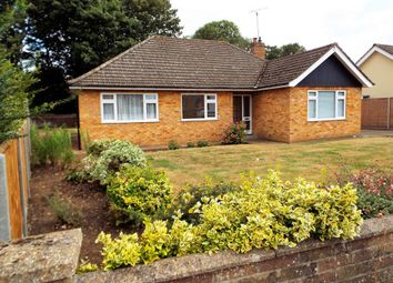 Thumbnail 3 bed detached bungalow to rent in Beech Close, Swaffham