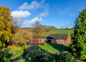 Thumbnail 2 bed bungalow for sale in Coreley, Ludlow