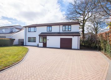 Thumbnail 4 bed detached house for sale in Leat Walk, Roborough, Plymouth