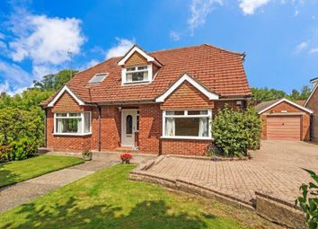 Thumbnail Property for sale in Acres Rise, Ticehurst, Wadhurst