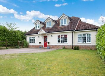 Thumbnail 4 bed bungalow for sale in Main Road, Kesgrave, Ipswich