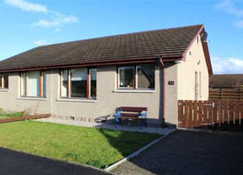 Thumbnail 2 bed semi-detached bungalow to rent in Dunnydeer Park, Insch, Aberdeenshire