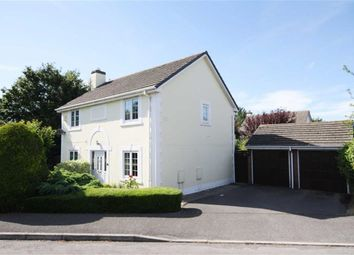 Thumbnail 4 bed detached house for sale in Fox Croft Walk, Chippenham, Wiltshire