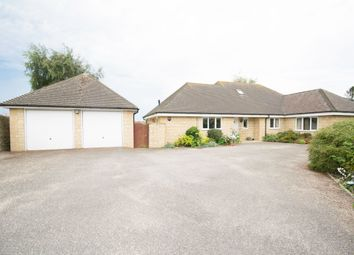 Thumbnail 4 bed bungalow to rent in Westleaze, Charminster, Dorchester