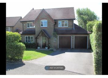 Thumbnail 4 bed detached house to rent in The Hall Way, Winchester