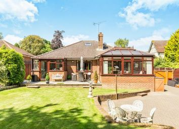 Thumbnail 3 bed bungalow for sale in Lyndhurst, Hampshire, -