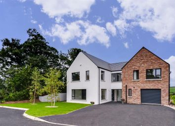 Thumbnail 4 bedroom property for sale in 5 Dunnwood Park, Londonderry