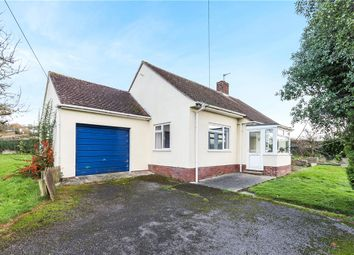 Thumbnail 2 bed detached bungalow for sale in Musbury, Axminster, Devon