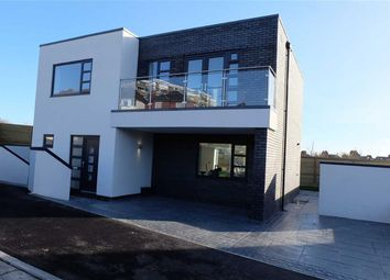 Thumbnail 4 bed detached house to rent in Romilly Park Road, Barry, Vale Of Glamorgan