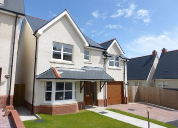 Thumbnail 4 bed detached house for sale in Bethany Lane, West Cross, Swansea