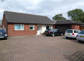 Thumbnail 3 bed bungalow for sale in The Avenue, Preston