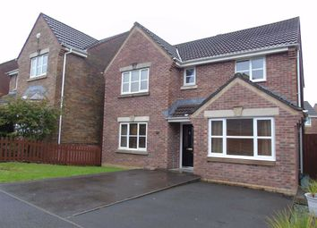 Thumbnail 4 bed detached house for sale in Clos Yr Hesg, Tregof Village, Swansea