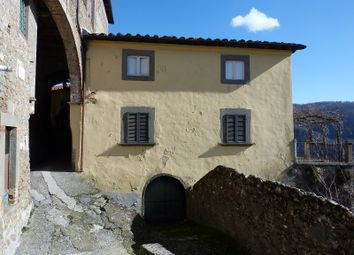 Thumbnail 8 bed semi-detached house for sale in Tereglio, Coreglia Antelminelli, Lucca, Tuscany, Italy