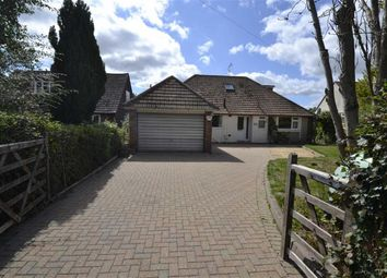 Thumbnail 4 bed detached bungalow for sale in East Lane, Chieveley, Newbury, Berkshire