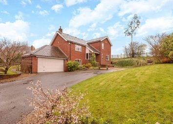 Thumbnail 5 bed detached house for sale in Lodge View, Farington Moss, Leyland