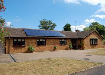 Thumbnail 4 bed detached bungalow for sale in Heronsford, West Hunsbury, Northampton