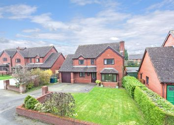 Thumbnail 4 bed detached house for sale in Limes Paddock, Dorrington, Shrewsbury