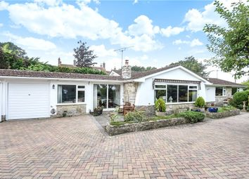 Thumbnail 3 bed detached bungalow for sale in Louse Lane, Spetisbury, Blandford Forum