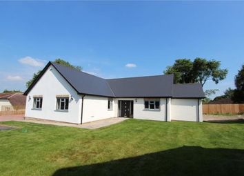 Thumbnail 4 bed bungalow for sale in Cambridge Road, Linton, Cambridge