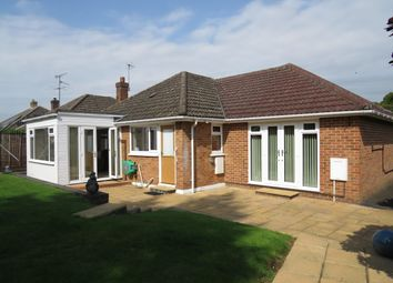 Thumbnail 4 bed bungalow to rent in Buckland Avenue, Basingstoke