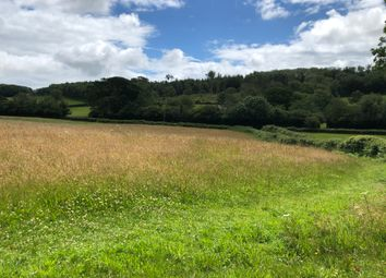 Thumbnail Equestrian property for sale in Ermington, Ivybridge