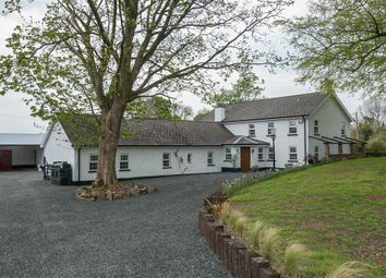 Thumbnail 4 bed detached house for sale in 16, Ballyclosh Lane, Ballymena