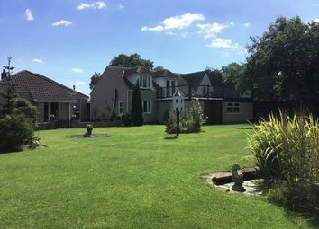 Thumbnail 3 bed bungalow for sale in Moulton Lane, North Cowton, Northallerton, North Yorkshire