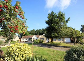 Thumbnail 2 bed detached bungalow for sale in Roman Crescent, Old Town, Swindon