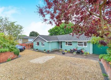Thumbnail 4 bedroom bungalow for sale in Ventnor, Isle Of Wight, .