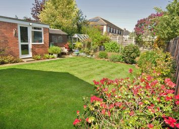 3 bed semi-detached bungalow for sale in Ellis Close, Cambridge, Cambridgeshire CB24