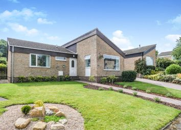 Thumbnail 3 bed bungalow for sale in Gerard Close, Walton, Chesterfield
