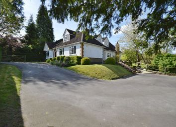 Thumbnail 5 bed detached bungalow for sale in Stablebridge Road, Aston Clinton, Aylesbury