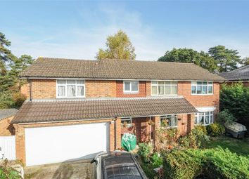 Thumbnail 5 bed detached house for sale in Heathland, Baughurst, Tadley