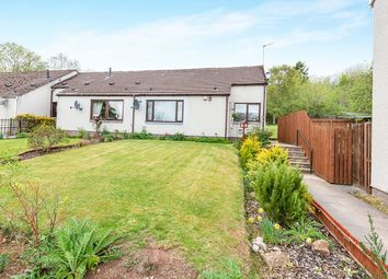 Thumbnail 1 bed bungalow for sale in Wrightfield Park, Maryburgh, Dingwall