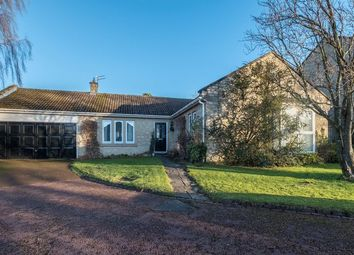 Thumbnail 3 bed detached bungalow for sale in Beech Close, Melton Park, Gosforth