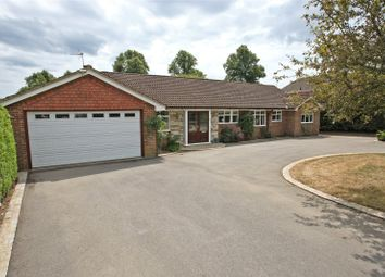 Thumbnail 4 bed detached bungalow for sale in Three Stiles Road, Farnham, Surrey