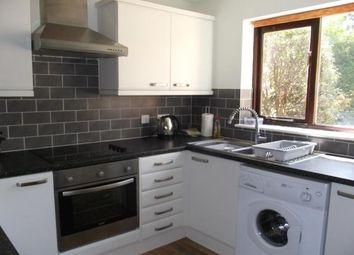 Thumbnail 2 bed property to rent in Higher Bridge Park, Wadebridge