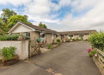 Thumbnail 4 bed detached bungalow for sale in Clifton Wood, Clifton Road, Newbridge