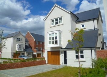 Thumbnail 4 bed detached house to rent in Cutting Drive, Basingstoke